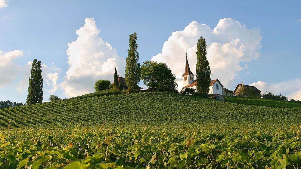 En 2003, le crépi de l'église avait été rénové. le badigeon contenait alors un ingrédient très local: du vin blanc de la réserve communale!
