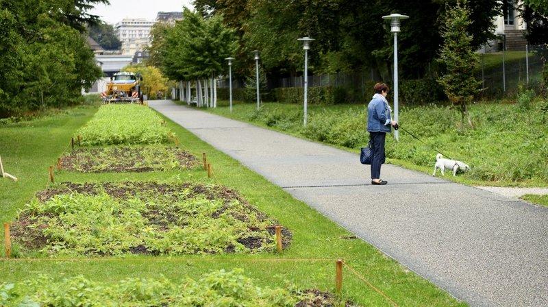 Quatre saisons pour fêter un siècle au service de l'agriculture vaudoise