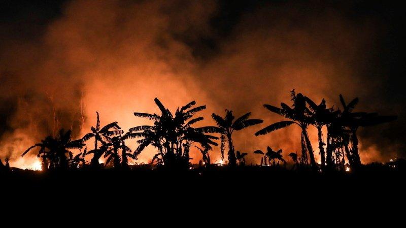Environnement: en Amérique du Sud, une sécheresse et des incendies sans précédent