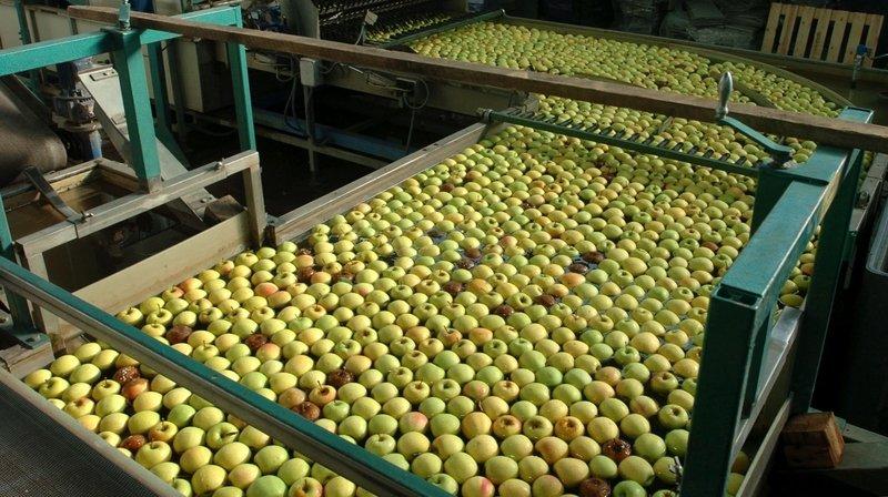 Le centre fruitier de Fenaco est situé à Perroy.
