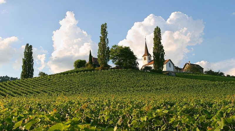 Les murs de l'église de Féchy seront-ils rénovés à l'aide de vin blanc?