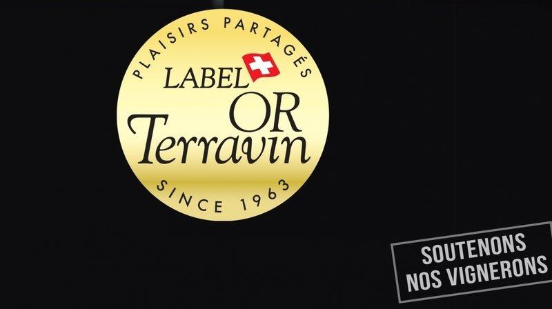 Spécial Vin - Terravin