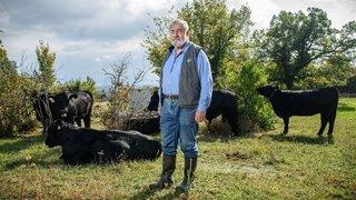 Natura-Beef, label qui a forgé en 40 ans le marché de la viande bovine suisse