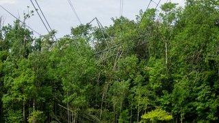 Pylône saboté à Gland: piste de l'écoterrorisme pas privilégiée