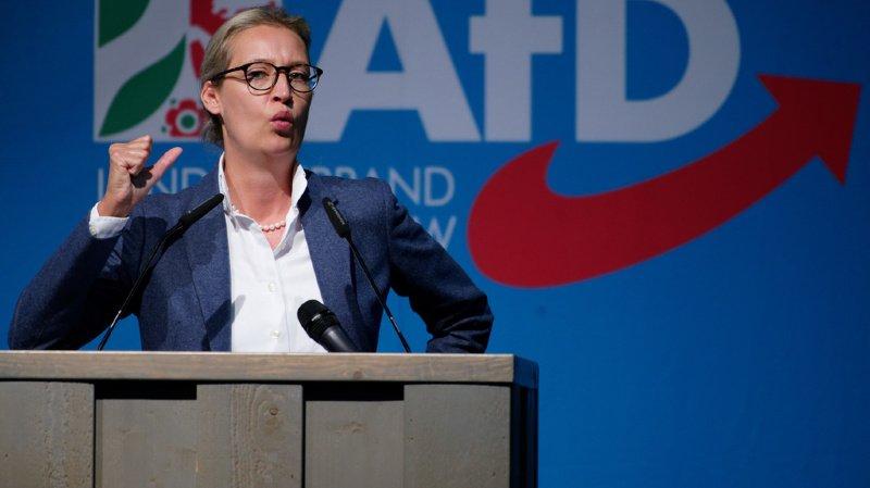 Allemagne: lourde amende pour l'AfD, qui a reçu des dons litigieux de Suisse