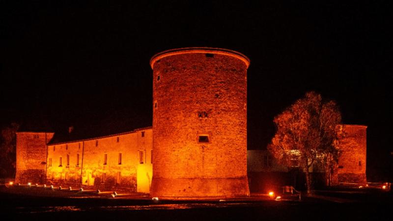 C'est la troisième année consécutive que le château sera illuminé pour lutter contre la violence faite aux femmes.