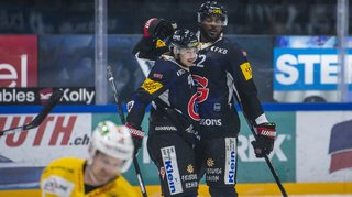 Hockey sur glace: Fribourg rebondit face à Bienne, Genève en patron face à Davos