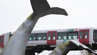 Pays-Bas: le métro déraille et termine sa course sur une baleine
