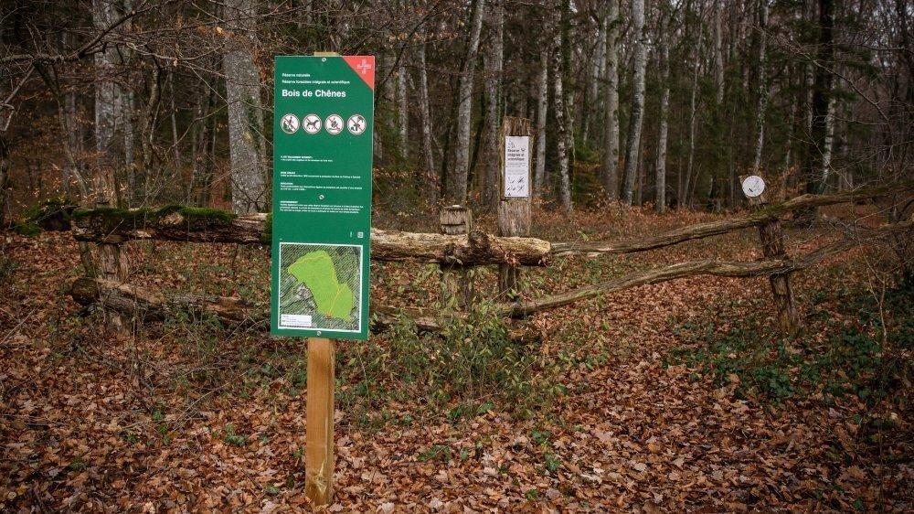 Dans la réserve du Bois de Chênes, ces panneaux étaient apparus il y a quelques mois.