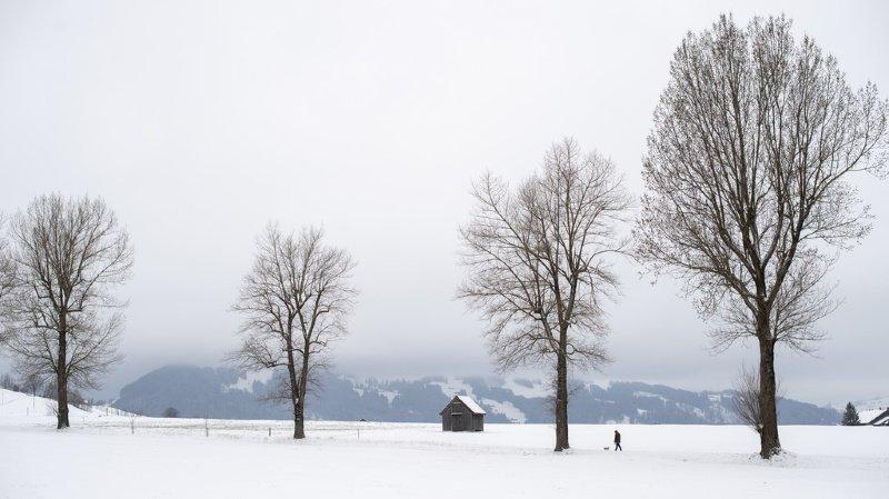 Sécurité: une pénurie d'électricité en hiver comme principal risque pour la population
