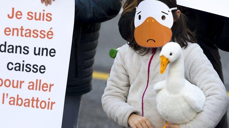 Des voix s'élèvent contre le gavage des canards et des oies et contre la vente de foie gras, comme ici lors d'une manifestation à Lausanne en 2018 (archives).
