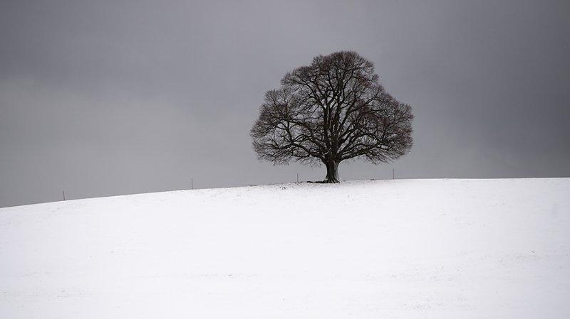 La Suisse orientale a frôlé les -30 degrés (image symbolique).