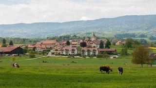 Résultats Communales 2021 – Essertines-sur-Rolle: découvrez la nouvelle Municipalité