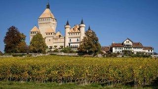 Communales 2021 – Vufflens-le-Château: découvrez les candidats à la Municipalité