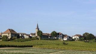 Résultats Communales 2021 – Lavigny: la Municipalité connue dès le premier tour