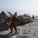 Visite guidée - Hergé, Tournesol & Tintin