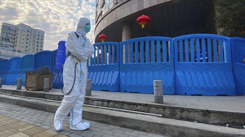 Coronavirus: virus absent de Wuhan avant décembre 2019 et non issu d'un labo, selon l'OMS