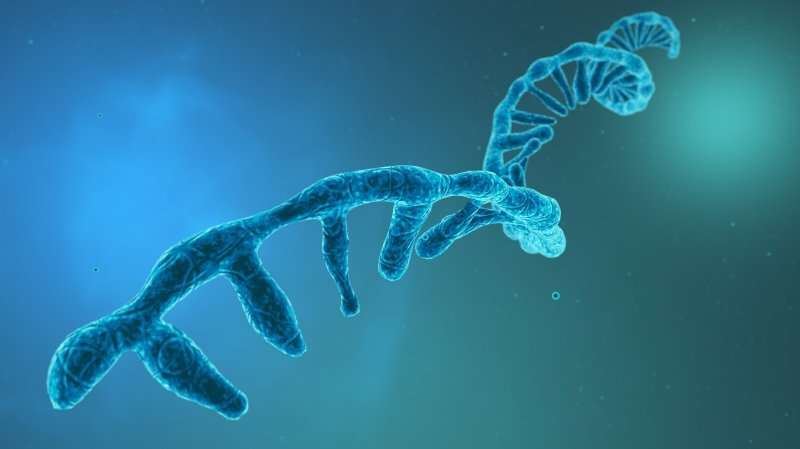 Coronavirus et vaccin: l'ARN en 5 questions