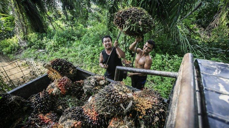 La coopération économique avec l'Indonésie reconduite