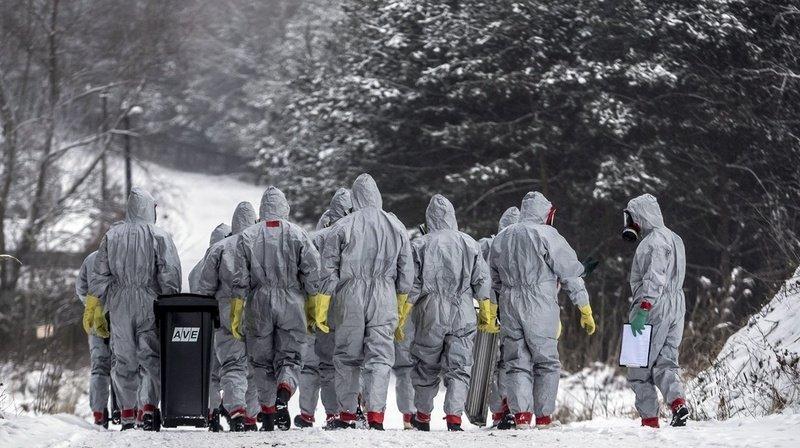 Grippe aviaire H5N8: un premier cas de transmission à l'humain aurait été détecté en Russie