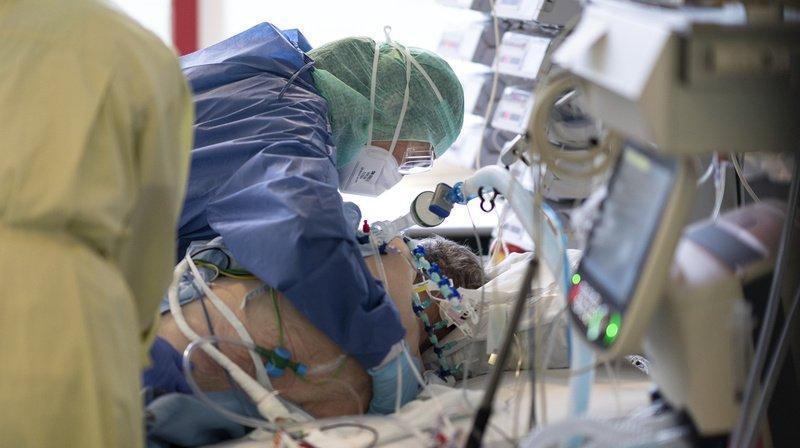 Neuf études qui ont suivi des patients sur le long terme ont été analysées.
