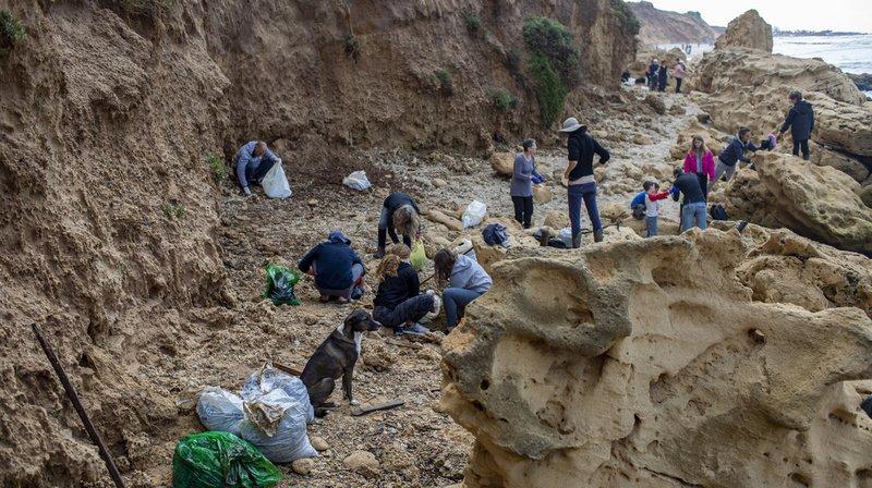 Israël: opération nettoyage après une vaste marée noire sur les côtes