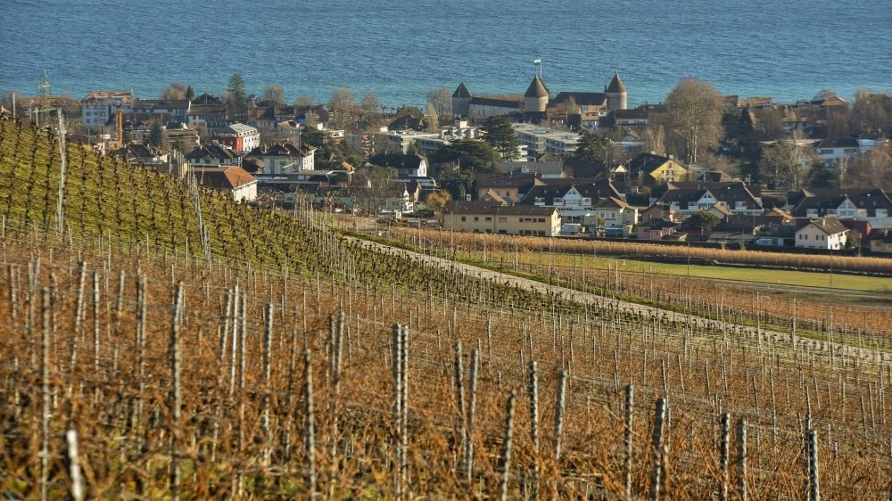 La future Maison des vins prévue à Mont-sur-Rolle fait partie des quatre projets.