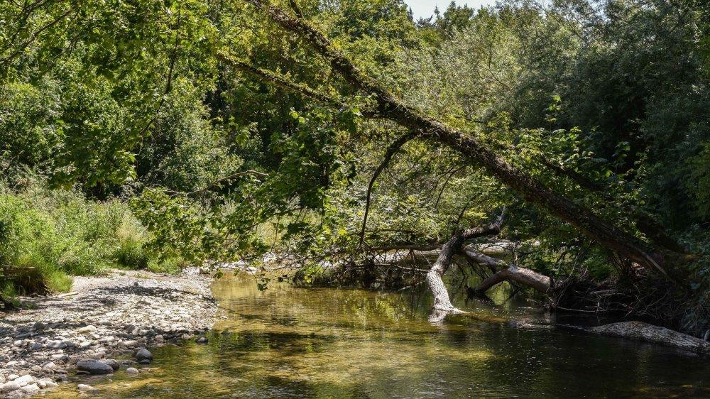 L'embouchure de l'Aubonne, à Allaman, sera la dernière (ou la première) étape du sentier le long de la rivière qui est prévu de Bière aux rives du Léman.