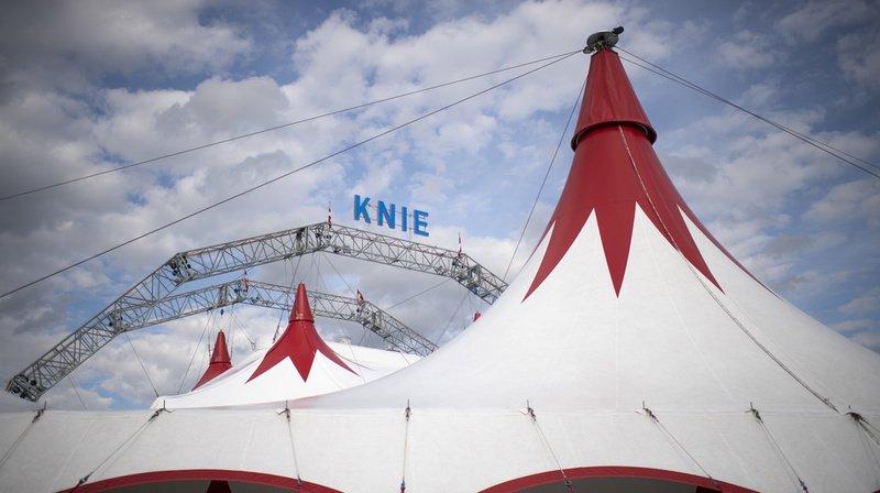 Victoire partielle du cirque Knie face à la billetterie deViagogo