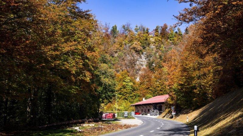 Saint-George a un patrimoine forestier qui continuera à être valorisé dans le chauffage à distance même s'il change de propriétaire.