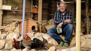 Les poules ont la cote, mais mieux vaut se renseigner avant d'en adopter