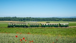 BAM La Voie des Sens - Train du Fromager