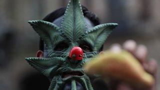 Lama en Suisse, Pâques orthodoxe en Grèce, manif pro-cannabis au Mexique: la galerie du 2 mai