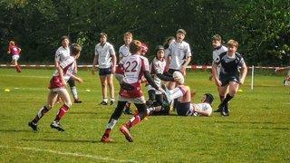 AS Rugby Morges: une collaboration avec Yverdon pour continuer à grandir