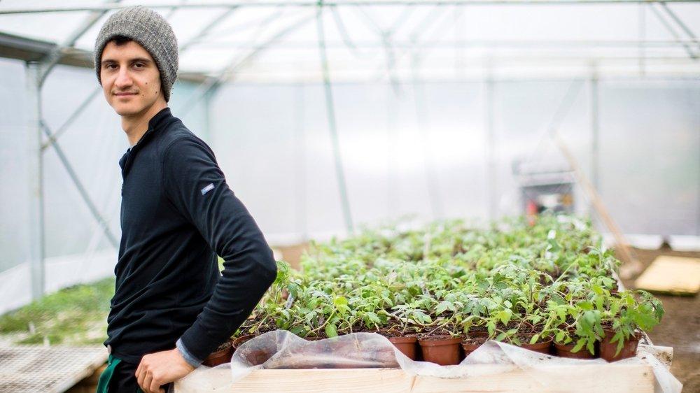 Raphaël Gétaz, maraîcher aubonnois, vend la majorité de ses légumes en ligne, sous forme de paniers hebdomadaires.