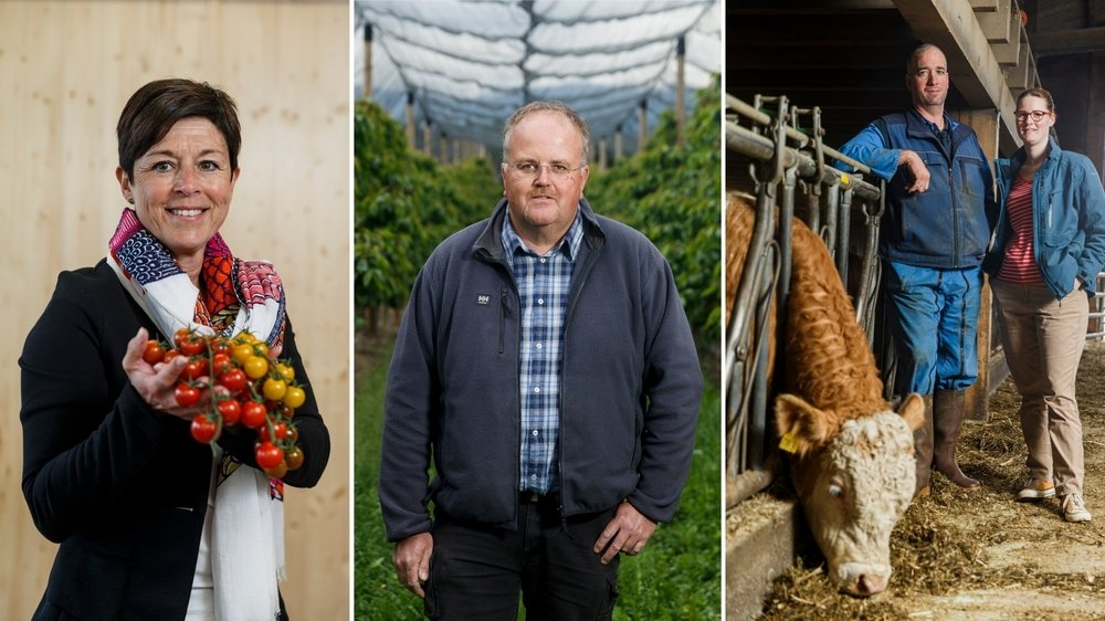 Pour les producteurs de la région, le recours aux labels est presque inéluctable pour s'en sortir.