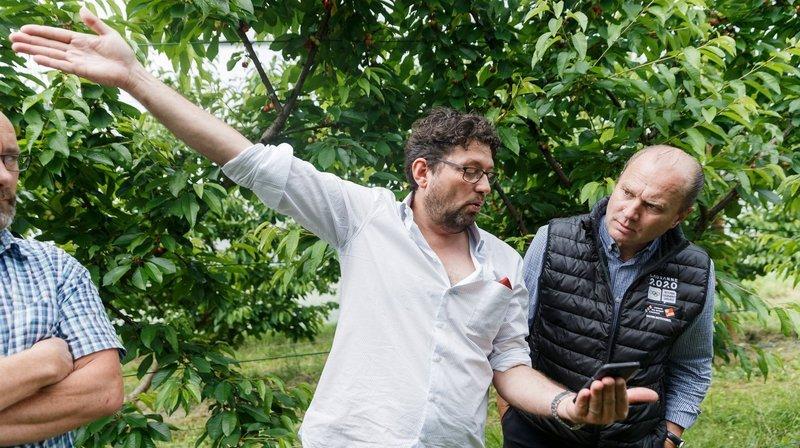 Philippe Leuba en visite dans les vergers pour constater les dégâts du gel