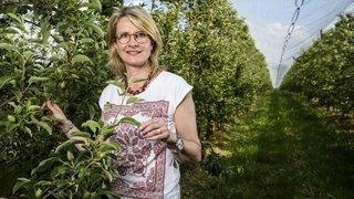 Les arboriculteurs ne mettent pas toutes les pommes dans le même panier