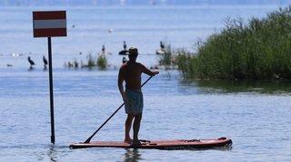 Préverenges: quand les paddleurs passent, les poussins trépassent