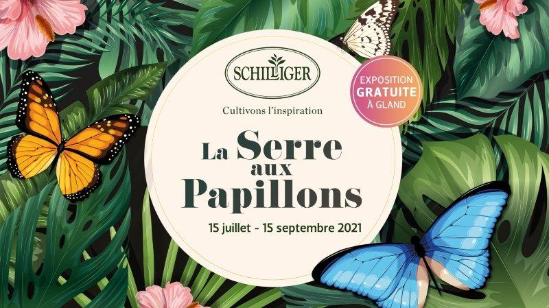 La serre aux papillons chez Schilliger