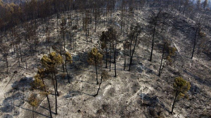 Incendies en Grèce: feux maîtrisés, fin de l'engagement suisse