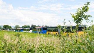 Voilà à quoi serviront tous les bus garés à Gland et Prangins