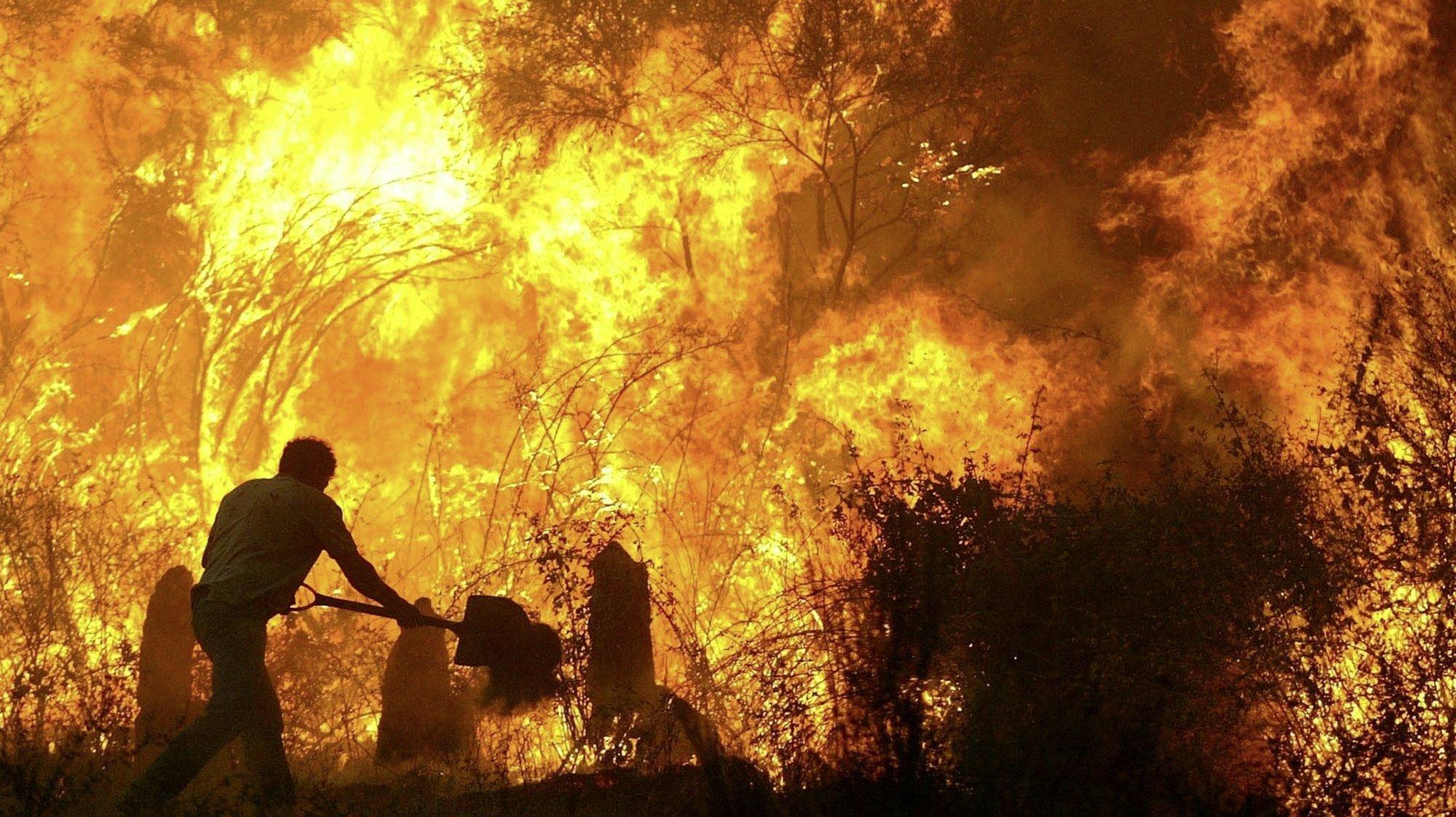 Le manque d'espace entre les forêts et les zones d'activité humaine augmente les risques de catastrophes, comme ici au Portugal, en 2004.