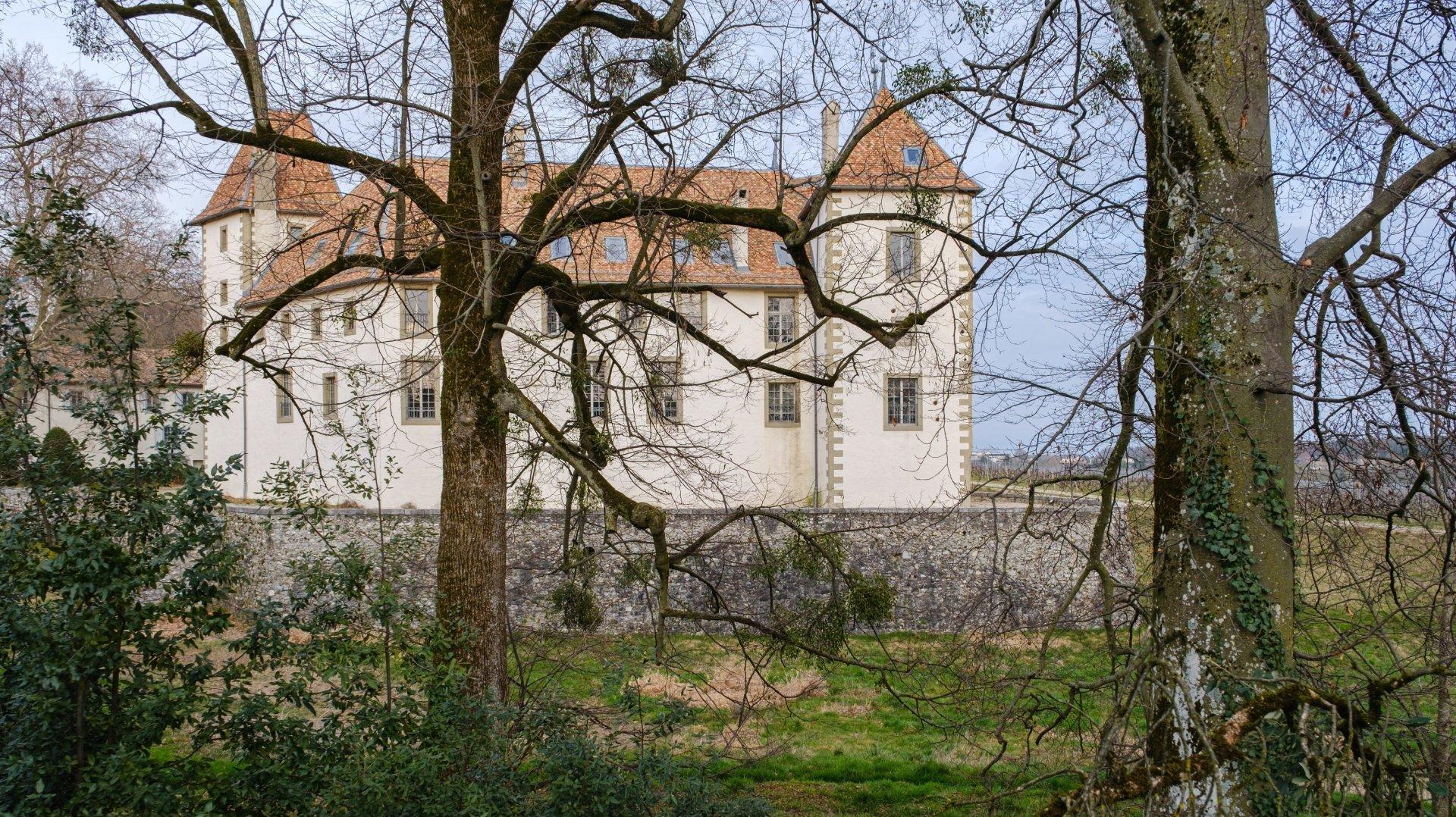 L'ex-propriétaire du château d'Allaman se retrouve sur le banc des accusés.