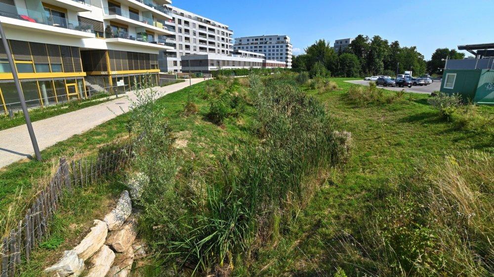Le sentier reliera notamment le quartier Les Jardins du Couchant à la gare.