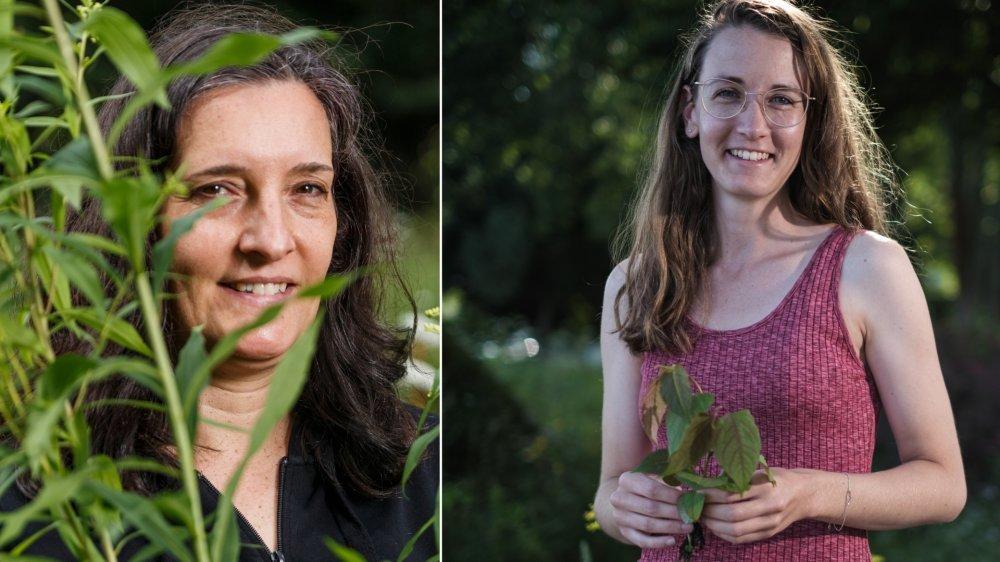 Camille Heller et Roxanne Brenac luttent contre les plantes envahissantes.