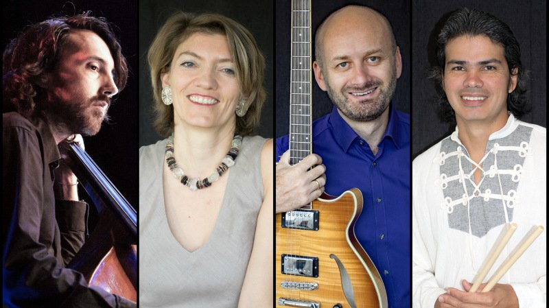 Quatuor Linea Curva