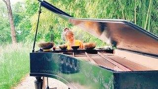 Concert Joanna Goodale