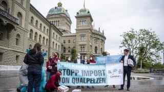 Fourrure d'animaux maltraités: près de 43'000 signatures contre l'importation