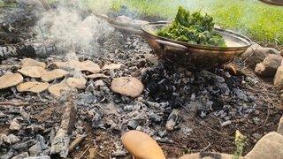 Plantes sauvages, connexion Nature et cuisine feu